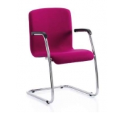 """Napier"" Meeting Chair"