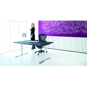 Astral 12 Sit Stand Desks